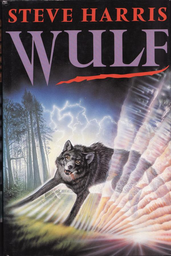 Paperback, Headline Book Publishing 1991. Forsiden er relevant men ucharmerende illustreret af Steve Crisp