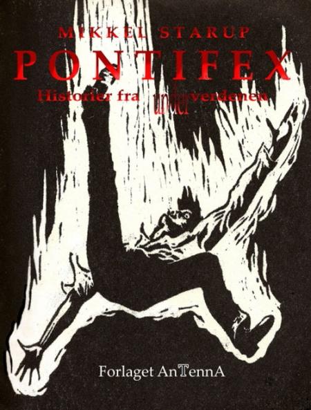 Paperback, AnTenna 2009